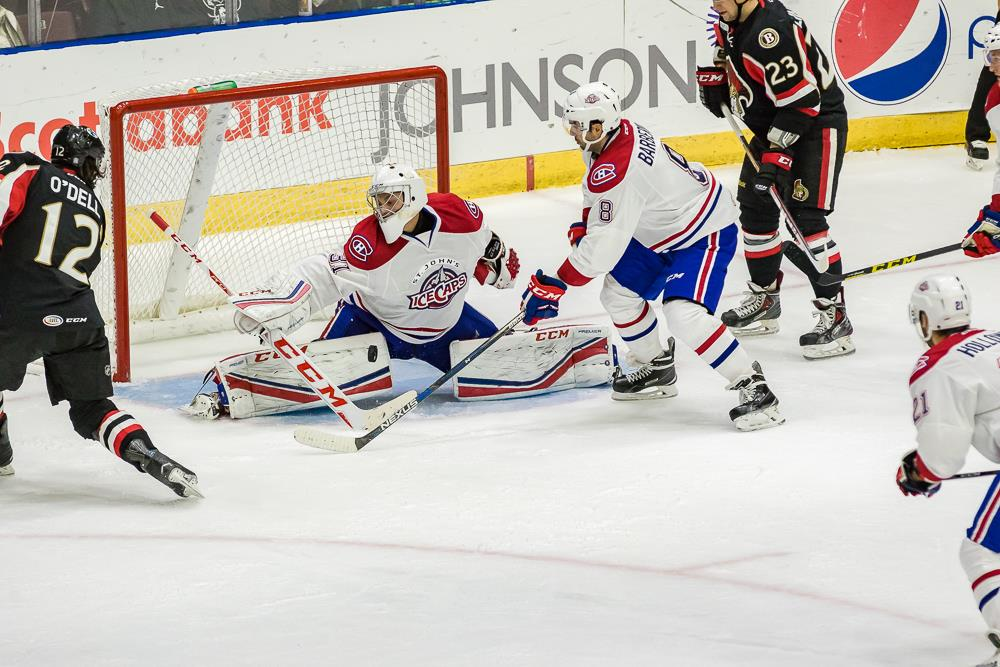 (Photo by St. John's IceCaps)