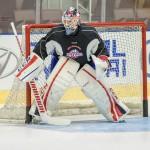 IceCaps Assign Goaltender Pasquale, Defenceman Brown to Brampton Beast