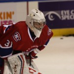 St. John's IceCaps Preview: Finishing Strong [VIDEO]