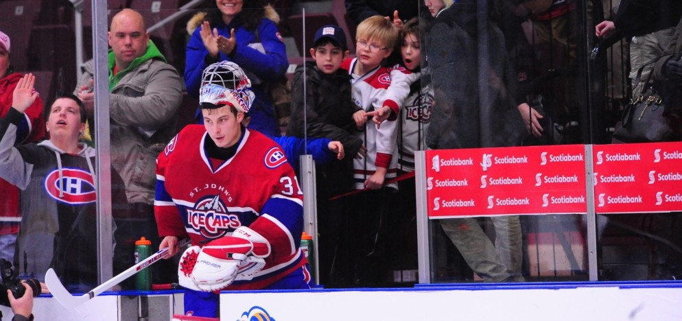 (Photo courtesy of St. John's IceCaps)